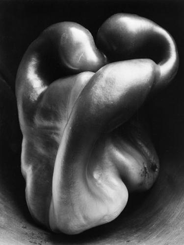 Pepper Edward Weston Food Photo