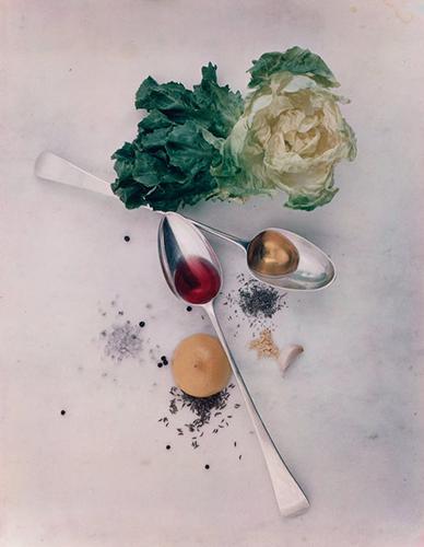 Salad Ingredient Food Photo Irving Penn