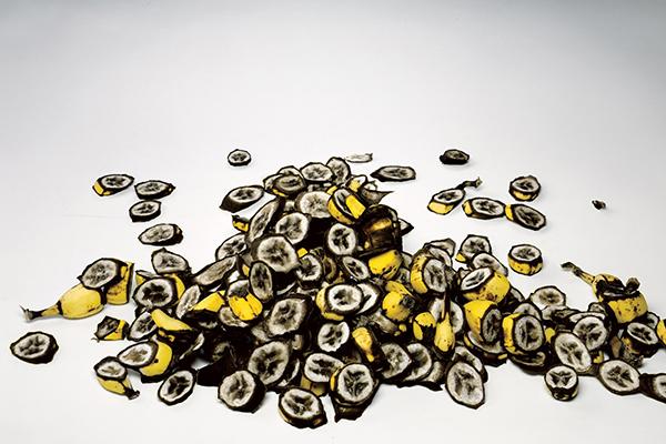 Smaal Bananas Food Photo Irving Penn