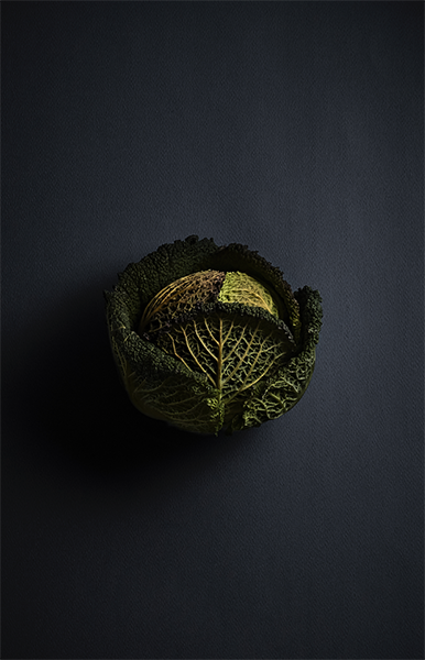 Cabbage Rembrandt Lighting Food Photography