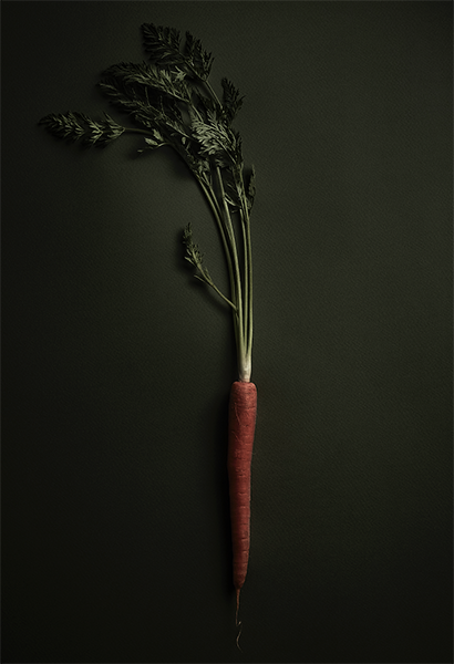 Carrot Rembrandt Lighting Food Photography