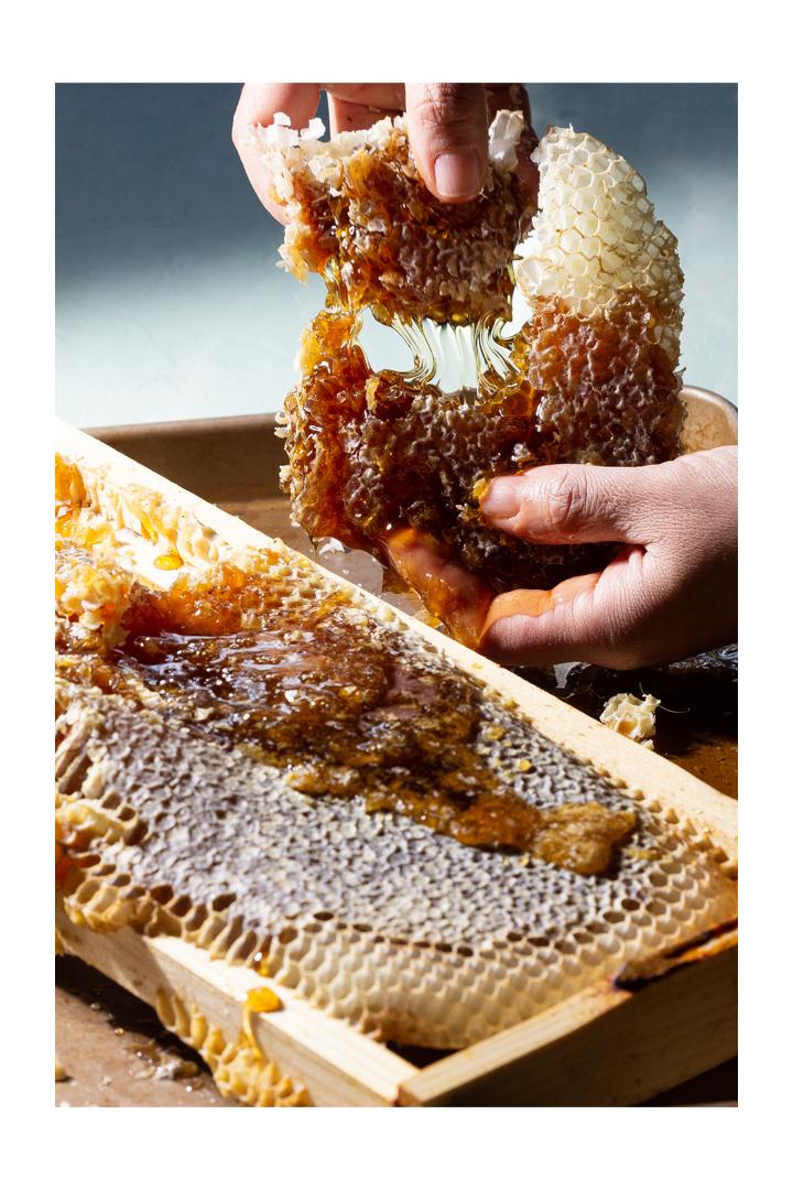making honey, honeycomb, beehive, phoode, editorial food photography